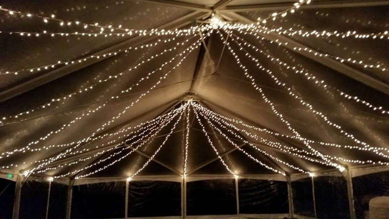 Swagged Twinkle Lighting<br><br>Shown in our Clear Top Tent!