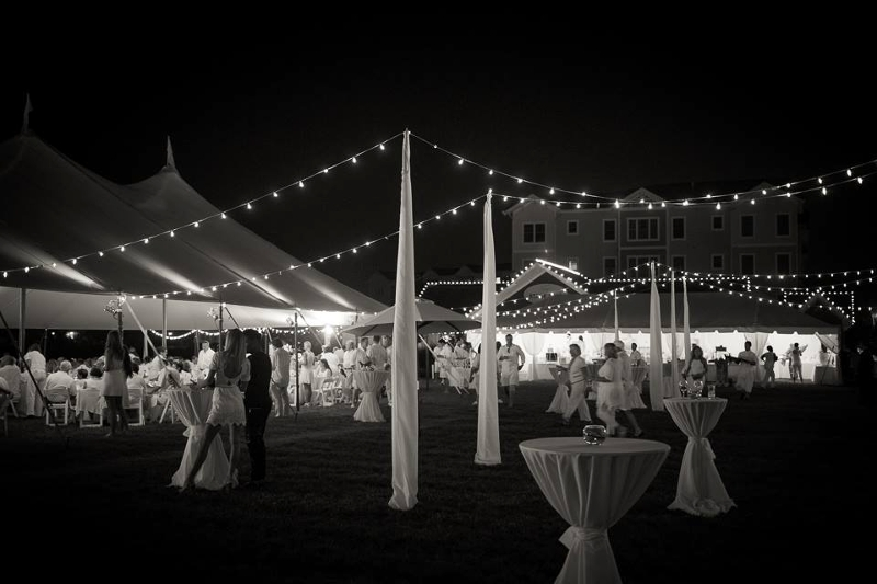 Overhead Outdoor Lighting with Uprights<br><br>Seen here with our white string lighting. (Credit: Joshua M. Freeman Foundation 'White Party')